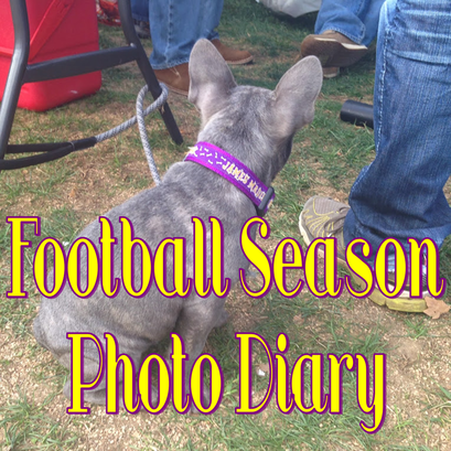 Weekend Recap: Football Season Photo Diary #PreppyPlanner