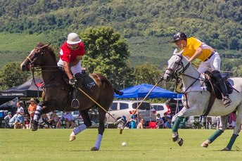 Attend a polo match at King Family Vineyards #PreppyPlanner